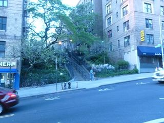 Wisteria stair street washington heights bronx steps