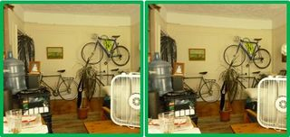 3D-Living-Room-palm-fan-bicycle-rack
